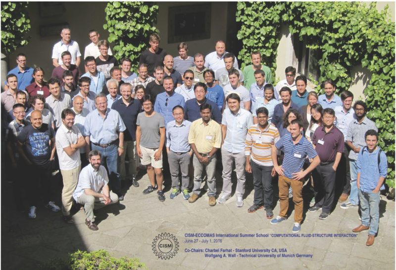 CISM ECCOMAS International Summer School on Computational Fluid-Structure Interaction 2016